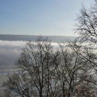 Туман и солнце :: Heinz Thorns