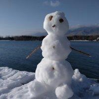 Снеговик :: Андрей Солан