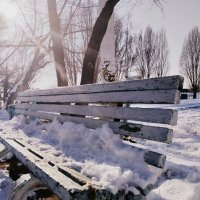 Скамейка :: Андрей Солан