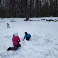 Дети всегда рады зиме! :: Андрей Лукьянов