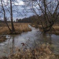 Декабрь на речке Поль :: Сергей Цветков