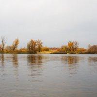 Река Козинка :: Олег