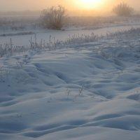 Низкое зимнее солнце :: Anna Ivanova