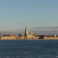 Санкт-Петербург :: Андрей Буховецкий