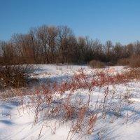Зимний пейзаж :: Виктор Замулин