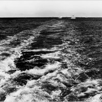 Морская прогулка :: kvstu