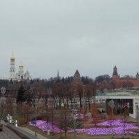 Вид на Кремль со стороны парка Зарядье. :: Люба