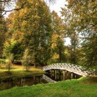 Горбатый мостик в Михайловском(Пушкинские горы) :: Павел Дунюшкин