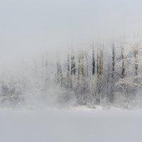 Туман. Озеро Светлое Алтай :: Ирина Малышева