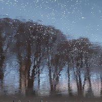 Мечты о снеге :: galina bronnikova