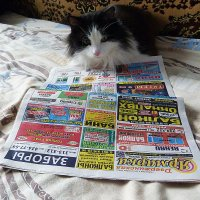 читатель... :: александр дмитриев