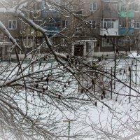 Наш двор :: Светлана SvetNika17