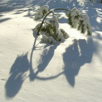Зимняя люстра :: Геннадий Худолеев
