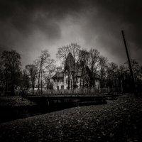 Осенью на Каменном острове... :: Sergey Okhotsky