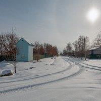Сегодня у нас так после снегопадика ... :: Евгений Хвальчев