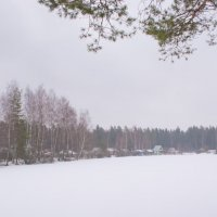 Замерзший зимний пруд в лесу :: Cissa Andebo