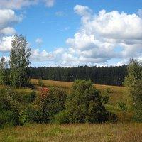 Начало сентября. :: оля san-alondra