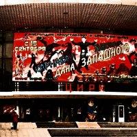 В Цирк! :: Рита Куприянова