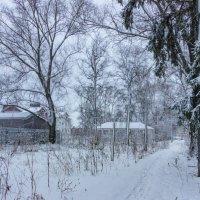 Один снежный денёк* :: Нина Кутина