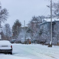 Один снежный денёк** :: Нина Кутина
