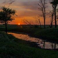 Закат в поле :: Глеб Дубинин