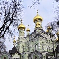 ВеликоЛепие Никольского собора... :: Тамара Бедай