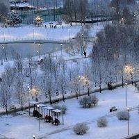 Дождались мы снега. :: Татьяна Помогалова