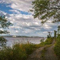 Вид на Комсомольск с правого берега Амура :: Людмила Фил