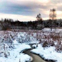 ... снег выпал только в январе... :: Сергей Беличев