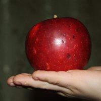 Скушай яблочко, мой свет... :: Tatiana Markova