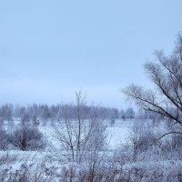 зима :: Денис Некрасов