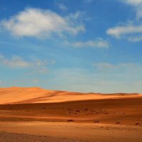 Пустыня Намиб :: Зуев Геннадий