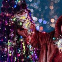 Старый Новый Год! :: Андрей Щетинин