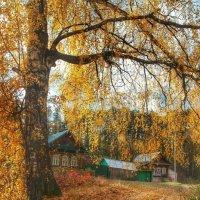 Осеннее убранство. :: Анастасия Самигуллина