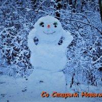 Со Старым Новым годом, друзья! :: Ольга Русанова (olg-rusanowa2010)
