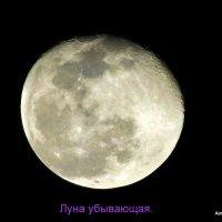 Убывающая луна. :: Валерьян Запорожченко