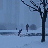 Прошлогодней зимой :: Елена