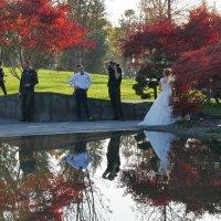 Свадебная фото сессия  в ноябре :: Alexey YakovLev