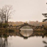 в осеннем парке... :: Андрей Вестмит