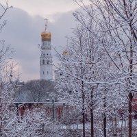 Новогодняя Москва. Зарядье. :: Надежда Лаптева