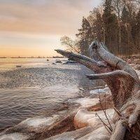 Зимний закат :: Юлия Новикова