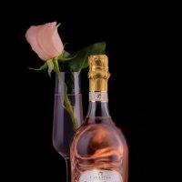 pinot rose :: Nara Nakhshkarian