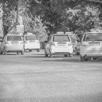 Такси много не бывает. :: Андрей
