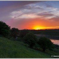 закат на пруду :: Александр Богатырёв