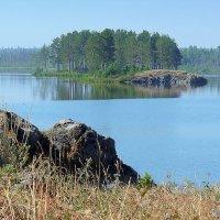 Утро на озере. :: Сергей l