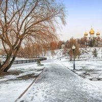 Успенский собор и дерево :: Юлия Батурина