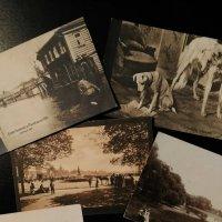 Прабабушкины открытки :: Tanja Gerster