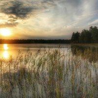 Озеро Женское. :: Анастасия Самигуллина