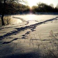 Морозный ранок. :: Николай Сидаш