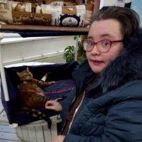 На выставке кошек в Лофт Проект ЭТАЖАХ (Петербург). :: Светлана Калмыкова